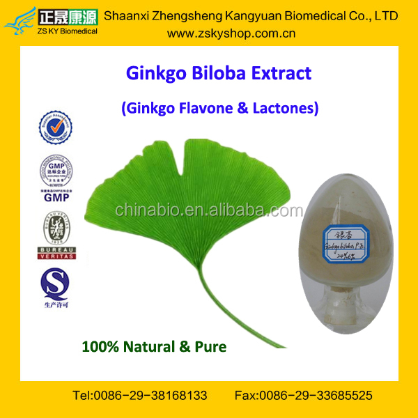 GMP Factory Supply Natural Gingko Extract with Ginkgo Flavone Glycosides