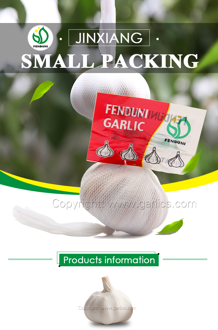 Leading Garlic Supplier in China (red garlic & white garlic)