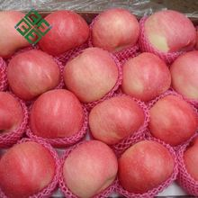 china green apple wholesale custard apple fruit