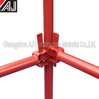 Standard painted steel wedge lock scaffolding