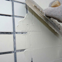 BASECOAT WALL PUTTY ( RENEW DOUBLE COMPONENT/GREY )