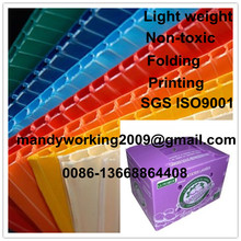 PP corrugated sheet box for grape packaging