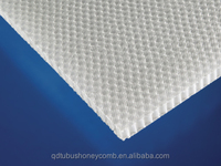light strong sound insulation PP HONEYCOMB with non-woven covered 6mm