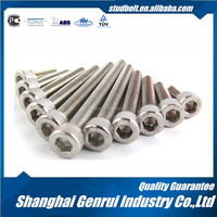 High Quality Grade 2 Titanium Hex Socket Cap Screw