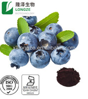 100% Natural Herbal Extract Bilberry Extract Hot Product