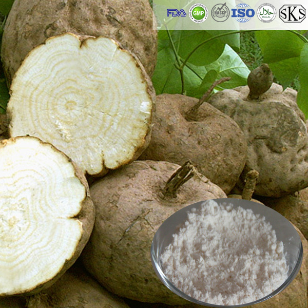 High quality food grade Pure pueraria mirifica extract powder