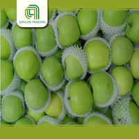 China bulk fresh fruit bulk fresh green apples with low price