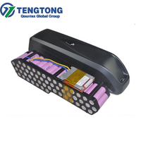 China Professional Battery Factory Direct Sell Ebike Li-on Battery Pack Hailong Case with 48V 10Ah
