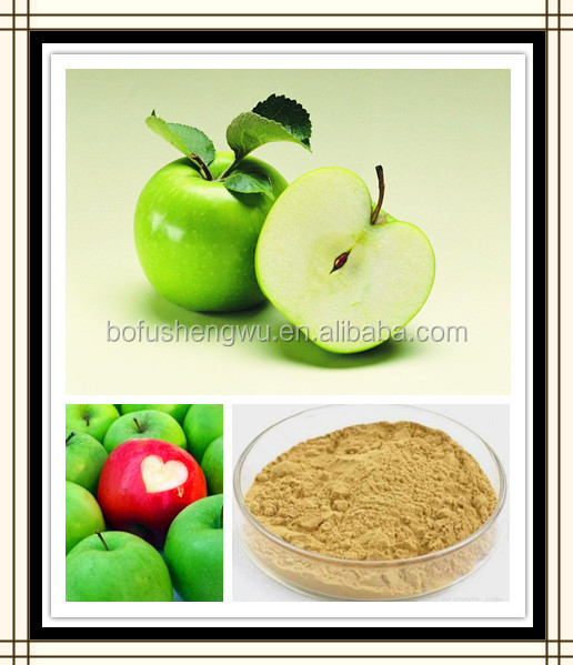 apple root extract,china apple extract,apple extract manufacturer