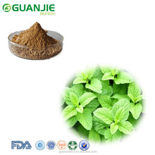 Natural Lemon Balm Extract/Melissa Officinalis Extract