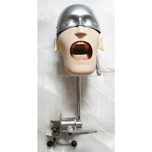 Dental Simulator simple Phantom Head