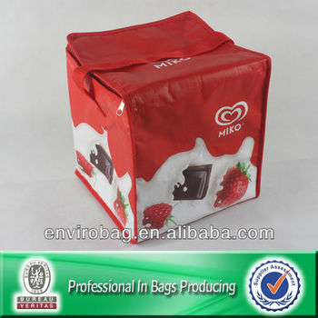 Non Woven Cooler Bag Aluminium Cooler Bag