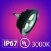 60W 3000K UL Explosion Proof Hazardous