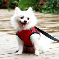 Pet Supply Neoprene Padded Chain Dog Harness Vest