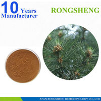 High Quality Natural Pine Needle Extract