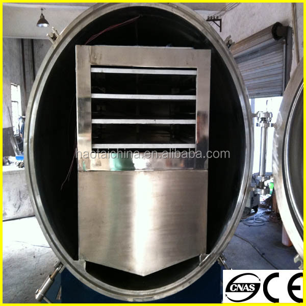 Mini mango dryer for sale fruit freeze dryer mango