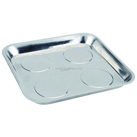 Stainless Steel Magnetic Tray