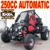 China Dune Buggy 250cc