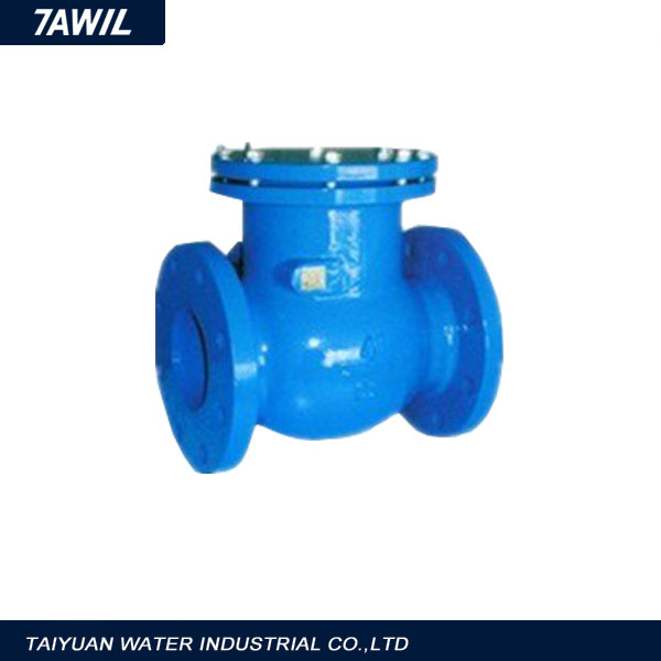 Stainless Steel Non Return Weighted Swing Check Valve