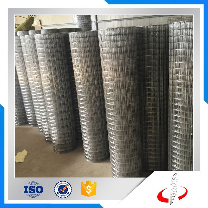 "3/4"", 1/2"", 1"", 1/4"", 3/8"" Pvc Coated Welded Wire Mesh In Anping"