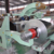 Steel slitting machine with spare part