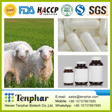500mg 1000mg Sheep Placenta Capsules Softgels