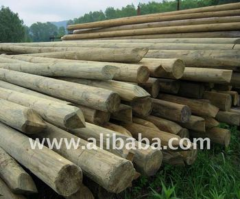 Wolmanit CX8 treated wooden poles