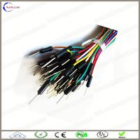 customized 2013 integrated circuit with jumper wire