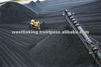 [100% CIQ Term] Indonesian Steam Coal NCV5500