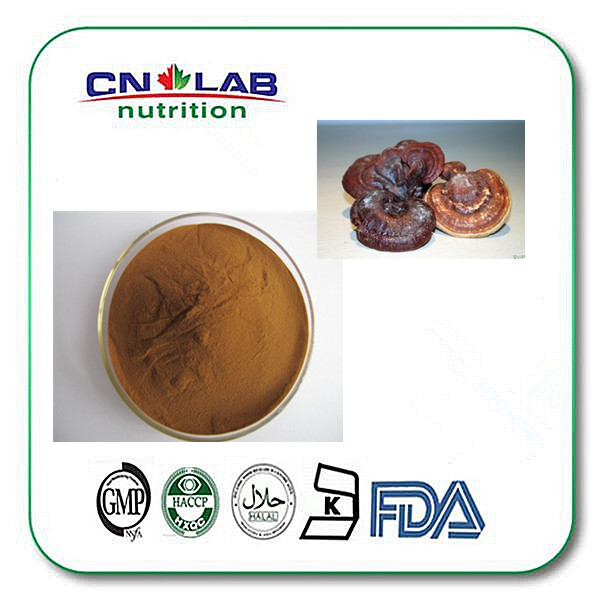 Herbal medicine natural ganoderma lucidum extract 10% 20% 30%