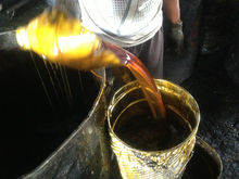 used cooking oil/ACID OIL