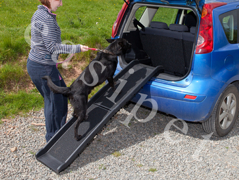 Plastic Folding Dog Pet Ramp