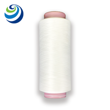 Anti-bacterials Silver Functional Nylon Filament Yarn For Weaving 70D/24F