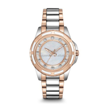 steel disc band alloy case water resistant custom logo high quality fashion lady watch made in china good price and service