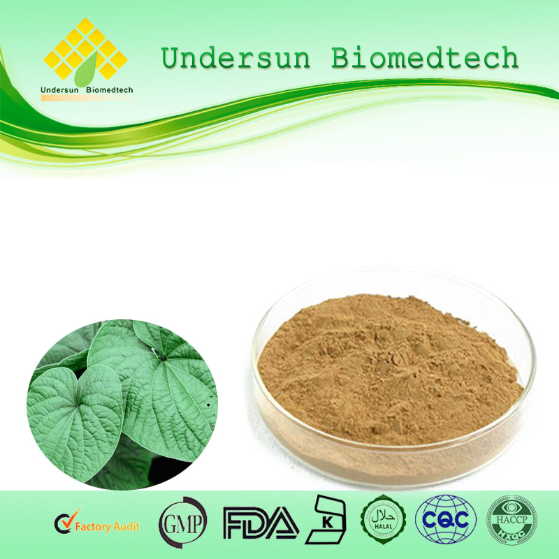 KAVA KAVA EXTRACT ,kava kava powder, buy kava wholesale Factory