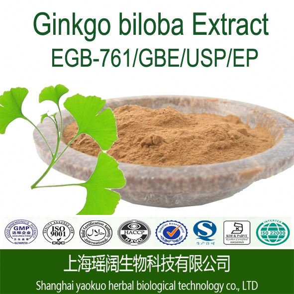 High Quality Ginkgo Biloba Leaf Extract/Terpene Lactones 6%