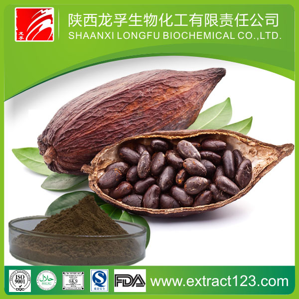 Brands of Cocoa Powder Form Cocoa Plant Extract With Jute Bags Packing