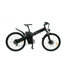 Seagull electric bicycle saled from professional e bike factory haoling