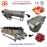 Vegetable And Fruit Cleaning Machine Processing Line|Fruit Bubble Washer Line