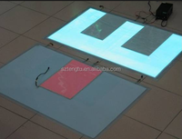 Advertising outdoor / indoor customized el panel with top quality
