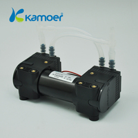 12V/24V Double head air operated vacuum pump