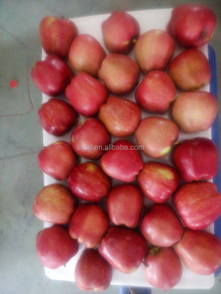 Hot sale bulk pome fruit Fresh red honey Shanxi Chinese fuji apples buy apples fruit wholesale