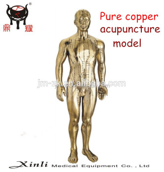 Pure Copper Male Human Model With Meridians And Acupuncture Points