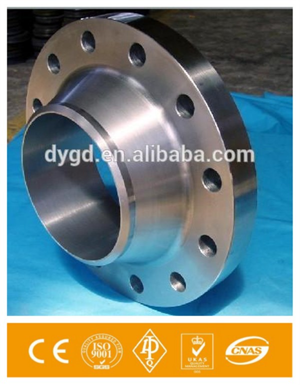 Standard and Custmerized Stainless Steel Puddle Flange