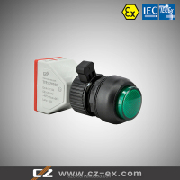 IECEx&ATEX Certified Explosion-proof Signal lamp