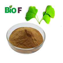 Bulk/Wholesale/Water-Soluble Ginkgo Biloba Leaf Extract Powder