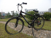 new design 2013 strong electric bicycle Karl low price