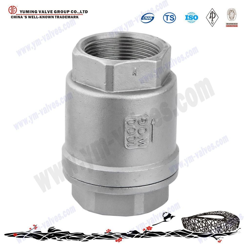 High quality Stainless steel 316 female threaded type soft seal Vertical Check Valves price