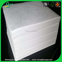 Non-woven Fabric 1073 Tyvek Printing Paper