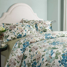 Popular domestic queen size 100% cotton printed bedding set